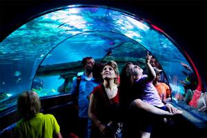 парк Порт Авентура подводный мир