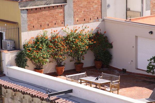 Аккуратные балкончики напротив.