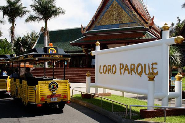 Лоро-парк обязательно надо посетить туристам с детьми.
