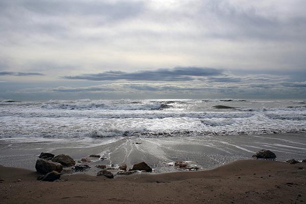 В холодном море особо не поплаваешь.