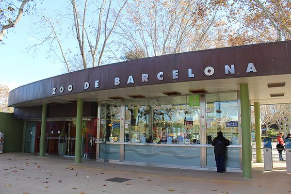 В зоопарке Барселоны собраны животные с разных уголков мира.