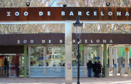 Зоопарк в Барселоне — три часа радости! Краткий путеводитель для российских туристов