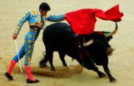 Страна Басков — часть 4: Страсть к быкам и по следам «Фиесты»