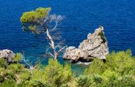 Собираетесь на Майорку? Король Испании Хуан Карлос считает, что лучшее время на острове – август