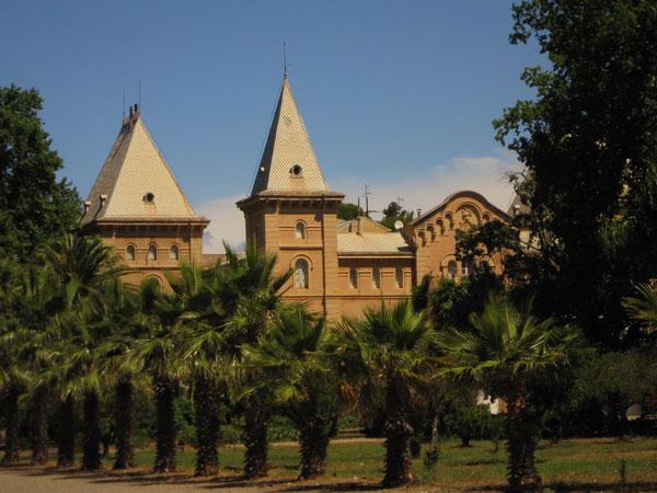 Дворец и пальмы.