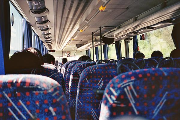 торревьеха городские автобусы
