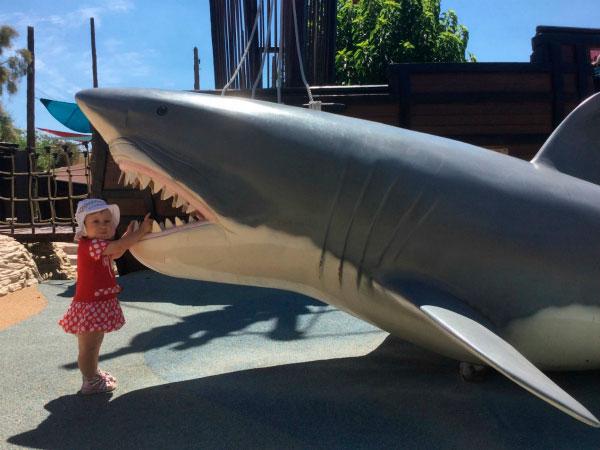 Муляж акулы.