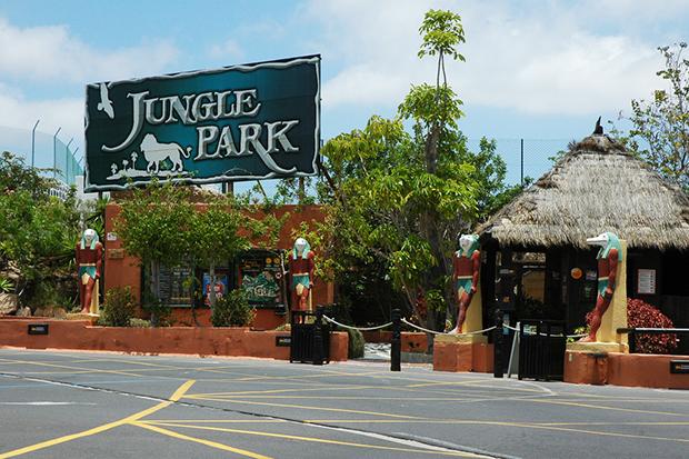 В Джангл-парке в естественной среде обитания живут не только орлы.