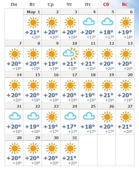 Прогноз погоды на Тенерифе на март 2019 года.