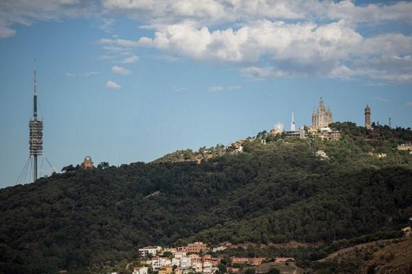 Гора покрыта зеленью и живописна сама по себе.