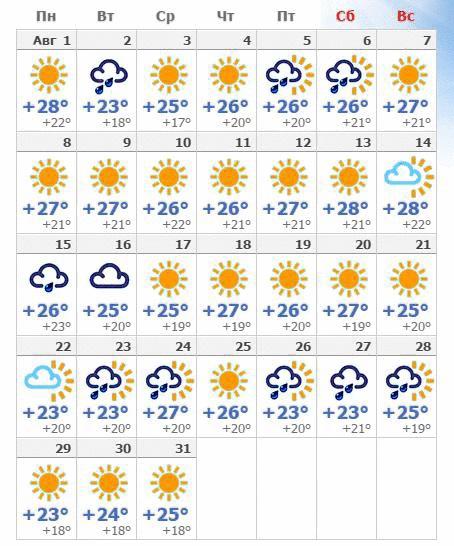 Погодные условия в августовском Салоу в 2019 году.