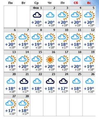Погода в февральском Тенерифе 2020.