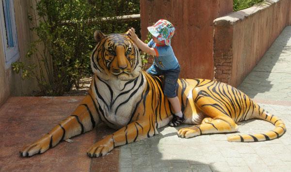 Укротитель тигров.
