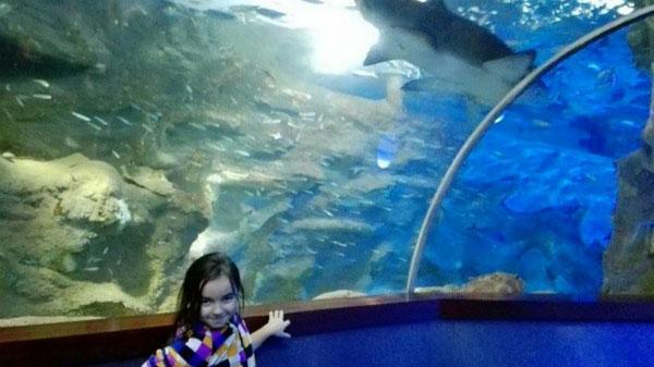 Девочка в аквариуме.