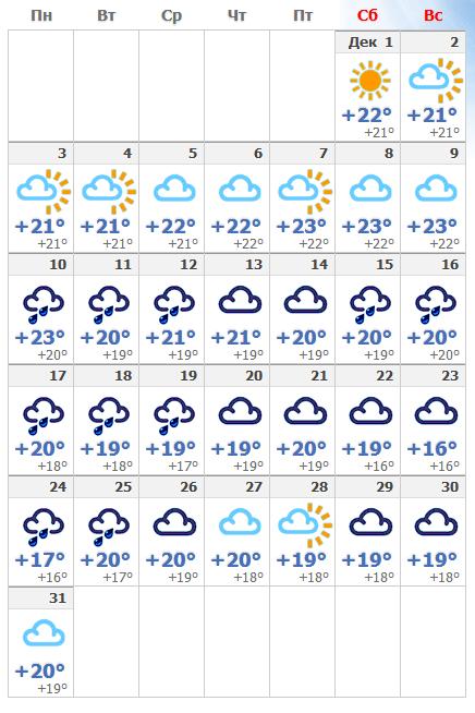 В первый зимний месяц 2018 года погода продолжает оставаться солнечной.