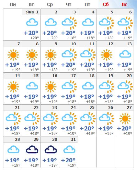 Погодные условия в январском Тенерифе в 2019 году.