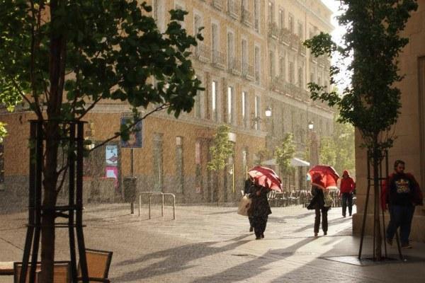 Грибной дождь.